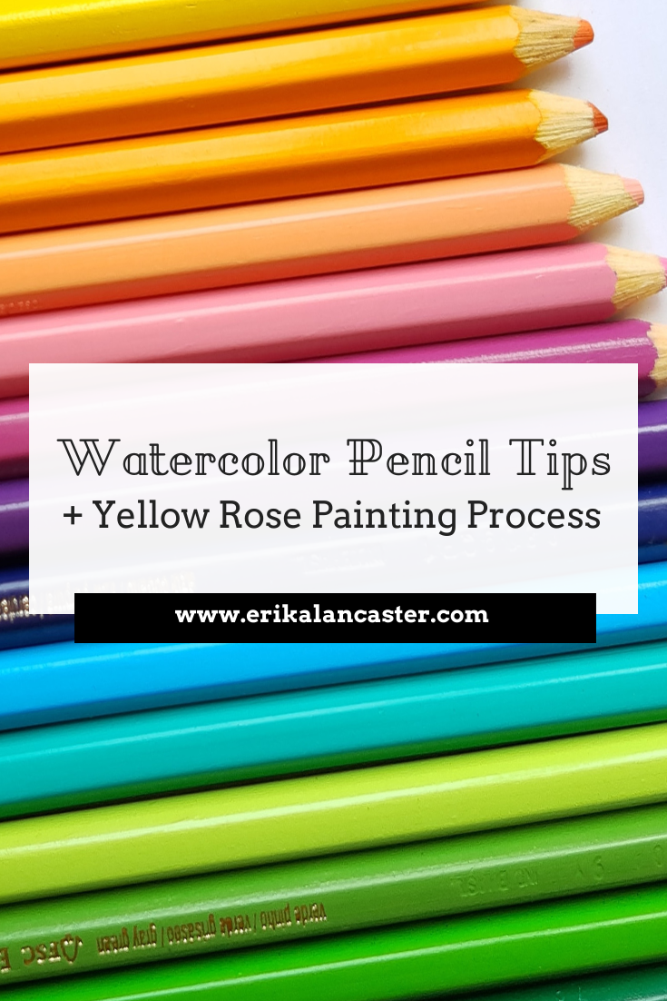 Watercolor Pencil Tips Rose Painting Process